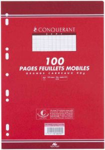 PAQUET 100 PAGES FEUILLETS MOBILES 17X22